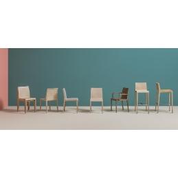 Chaise 420 Young Pedrali chene teinté chaise légère et solide
