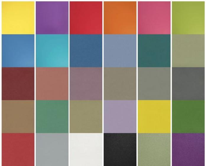 Cadet colours Zest