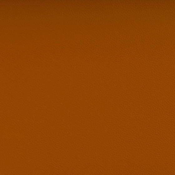 Simili cuir Avangarde Spradling